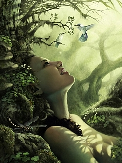 Earth, Witches and Forests on Pinterest